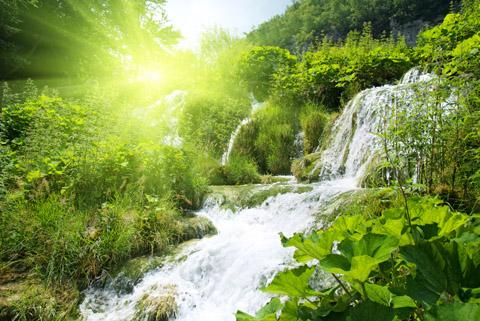 termeszet vízeséssel